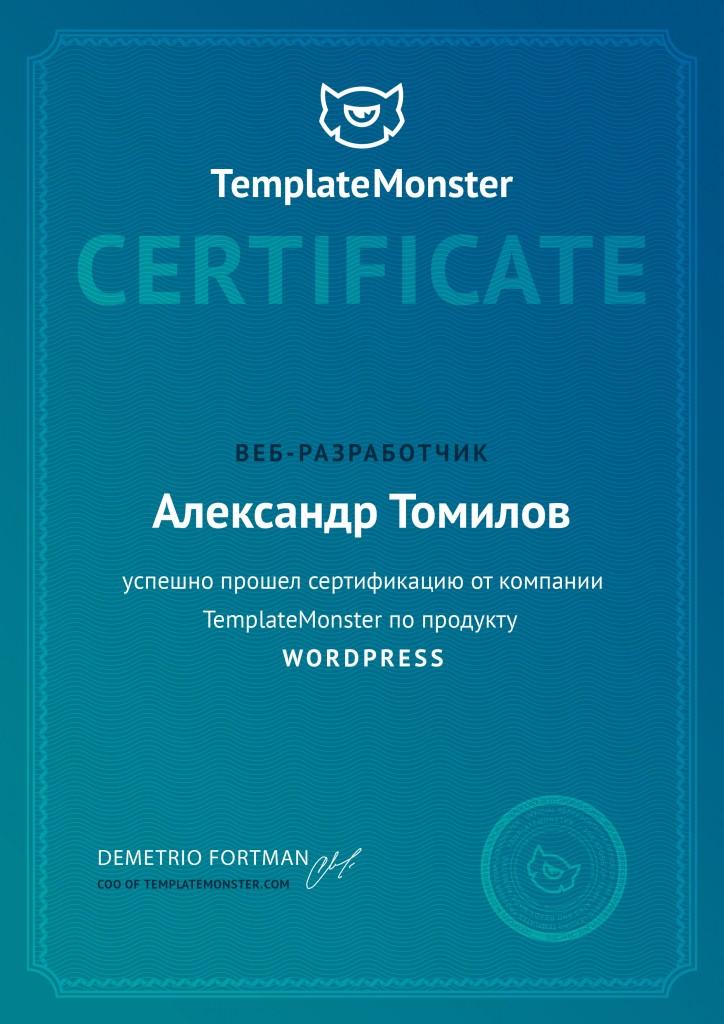 WordPress Александр Томилов